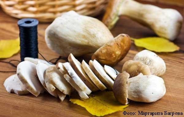 Сушка Белого гриба