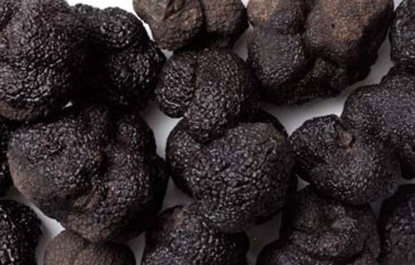 Черные трюфеля