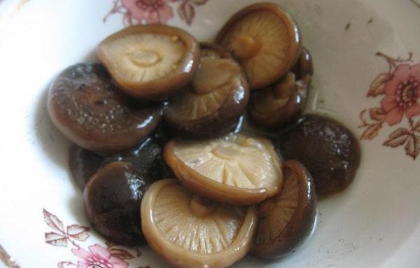 Рецепт соления черных груздей на зиму 164