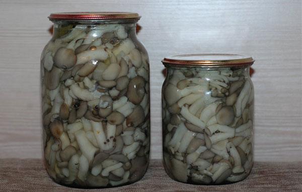 Как мариновать грибы вешенки