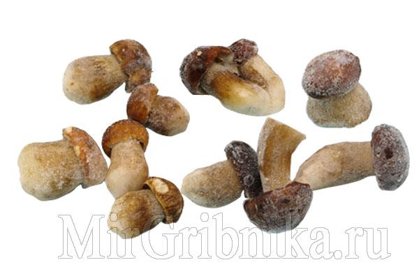 Заморозка сырых белых грибов