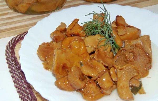 лисички соленые на зиму рецепты приготовления